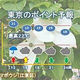 21日 東京 昼頃にかけて大雨と雷、強風