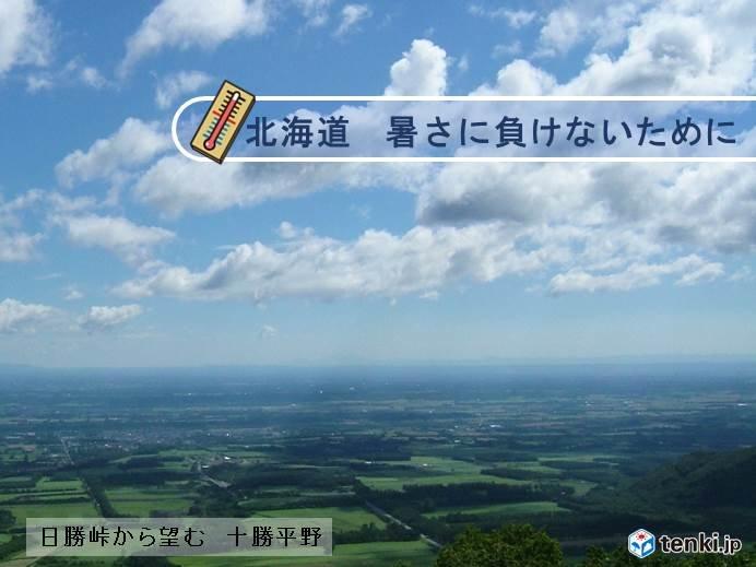 北海道 暑さに負けないために