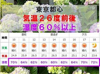 東京都心 不快な暑さ