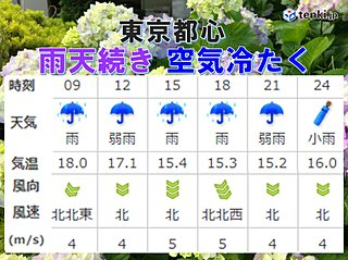 東京都心 強弱を繰り返しながら雨が続く