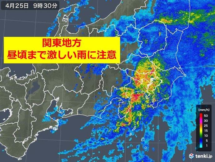 ザーザー降りの関東 昼頃まで激しい雨