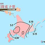 桜前線 津軽海峡を渡りいよいよ北海道に