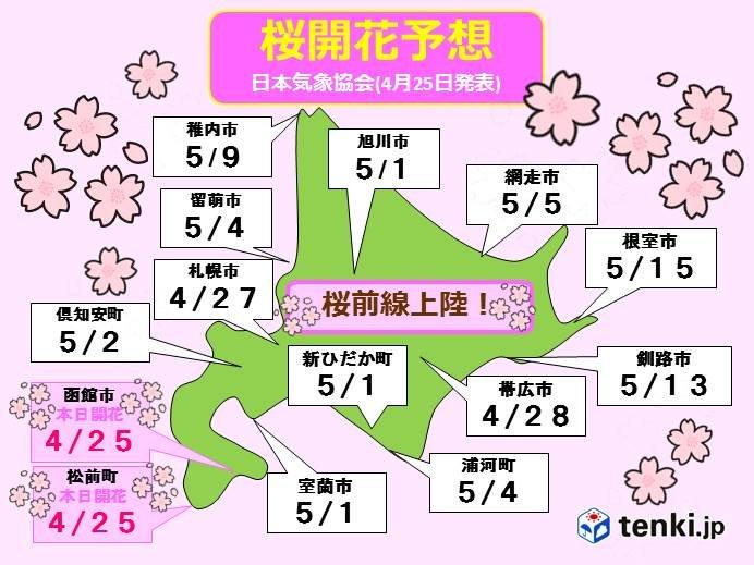 ついに桜前線上陸!道内に桜シーズン到来!