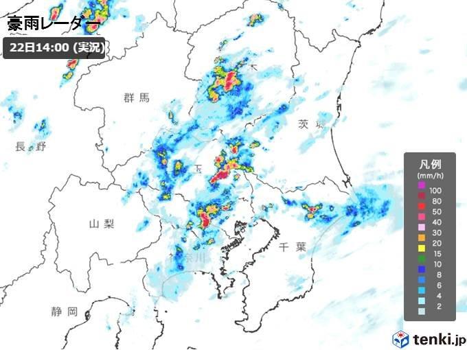 傘を差しても濡れるほどの雨に