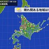 北海道 7月入ると日差し少なく