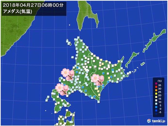 桜咲く北海道 所々で今年一番暖かな朝