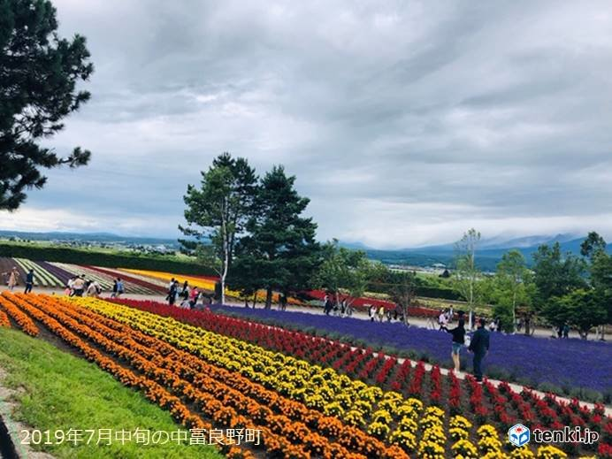 花の季節の北海道は行楽日和に