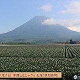 北海道 今週末から厳しい暑さに