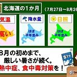 北海道の1か月 8月の初めまで厳しい暑さ