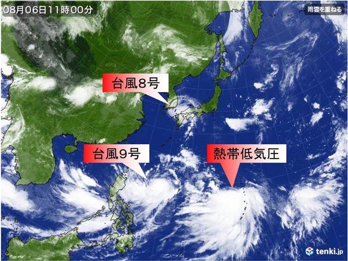 【台風8号】今後の動き