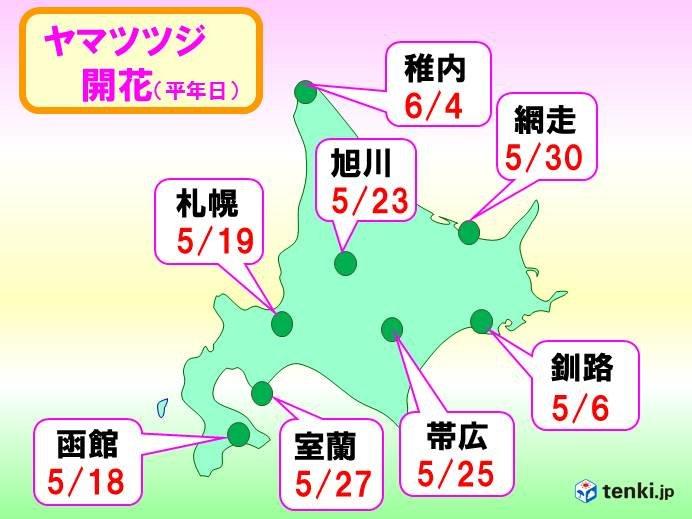 北海道の1か月 日差しと暑さは中旬以降_画像