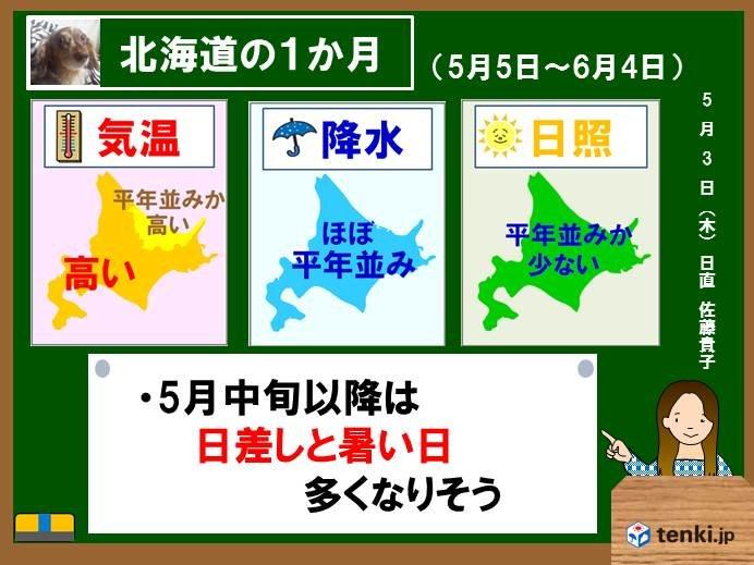 北海道の1か月 日差しと暑さは中旬以降