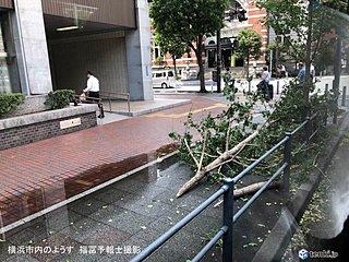 台風15号まとめ 首都圏で記録的な暴風雨