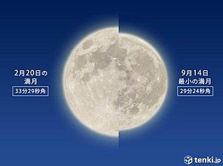 今朝は都心もヒンヤリ 今夜は今年最小の満月見えるか