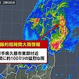 岩手県 記録的短時間大雨情報が続出
