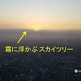 30日 濃霧の朝 日中は快適な陽気に