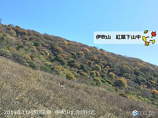 東海 伊吹山では紅葉下山中