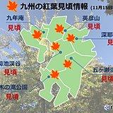 九州 週末は紅葉狩り日和