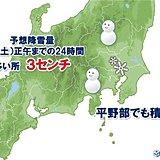 関東甲信地方 雪に関する情報 平野部でも積雪の恐れ