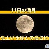 北海道 11日の満月 見上げるほどの高さに