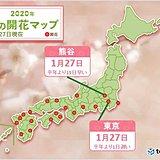 寒空のもと 東京や熊谷で「梅」開花