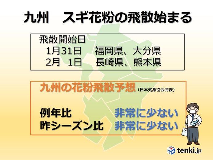 九州 スギ花粉の飛散始まる