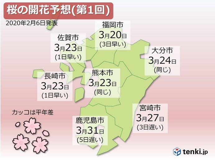 九州 桜の開花予想(第1回)発表