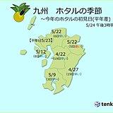 九州 ホタルの季節到来