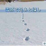 北海道 雪原で足あと探し