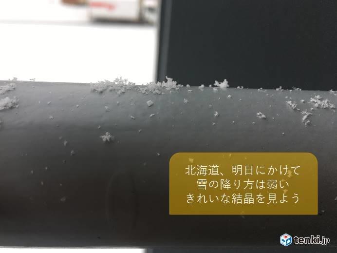 北海道 雪の結晶を見よう