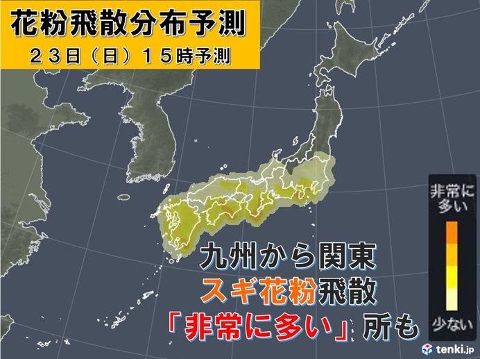 23日 東京など花粉の大量飛散に注意 北は暴風
