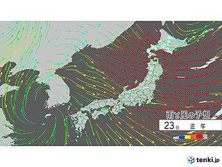 35メートルの暴風警戒 スギ花粉一気に飛散か