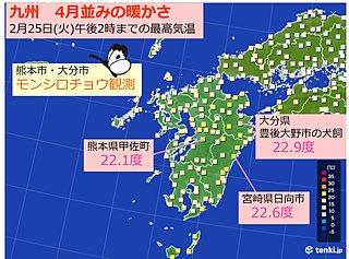 九州 モンシロチョウも飛ぶ暖かさ 20度超え続出