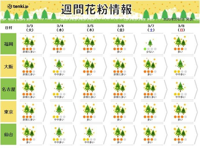 スギ花粉「非常に多い」ウィーク 九州~東北でピーク