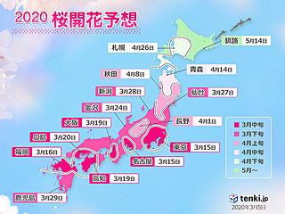 日本気象協会「桜開花予想」 記録的早さ あと10日