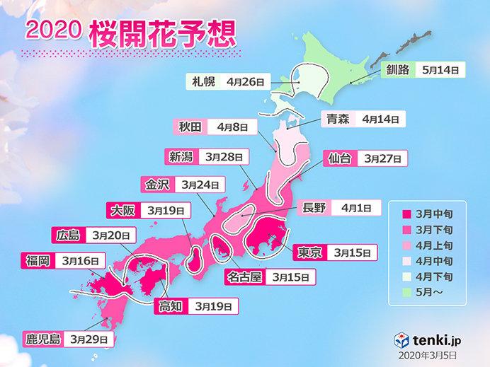 桜前線スタートまであと6日!?