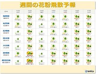 九州 花粉の飛散に注意