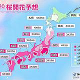 日本気象協会「桜開花予想」東京は13日で記録更新へ