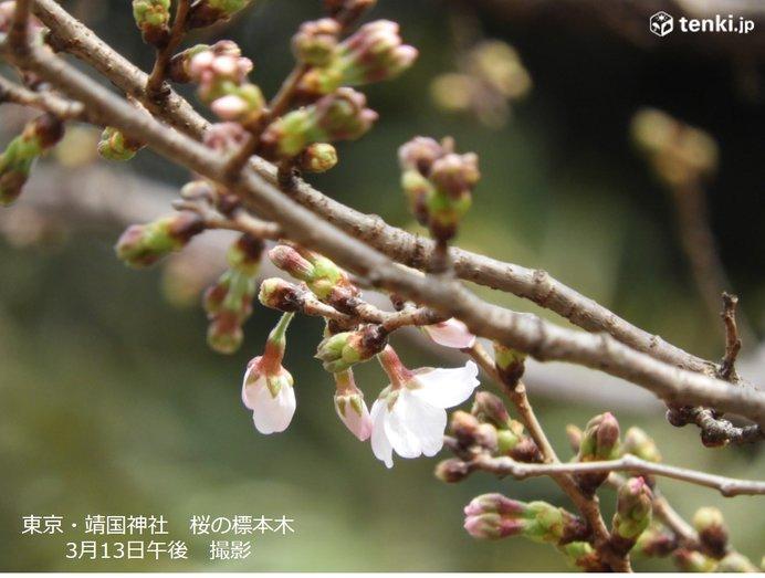 「4月並み」のち「真冬並み」来週もジグザグ気温注意_画像