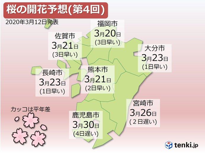 九州 桜の開花予想 記録的暖冬の影響も