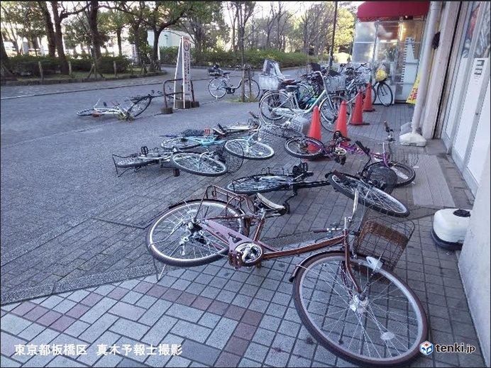 北風強く 東京都心で最大瞬間風速24.3メートル