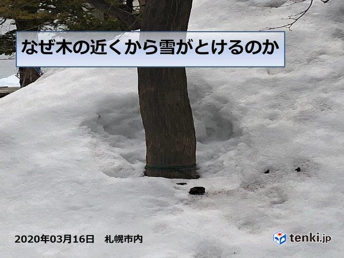 北海道 今週は季節先取りの陽気も