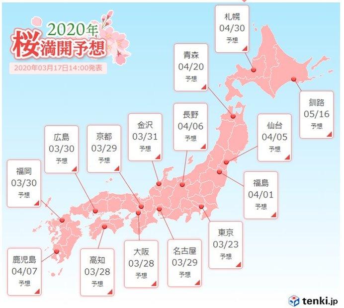 桜開花ラッシュ 東京は満開へ