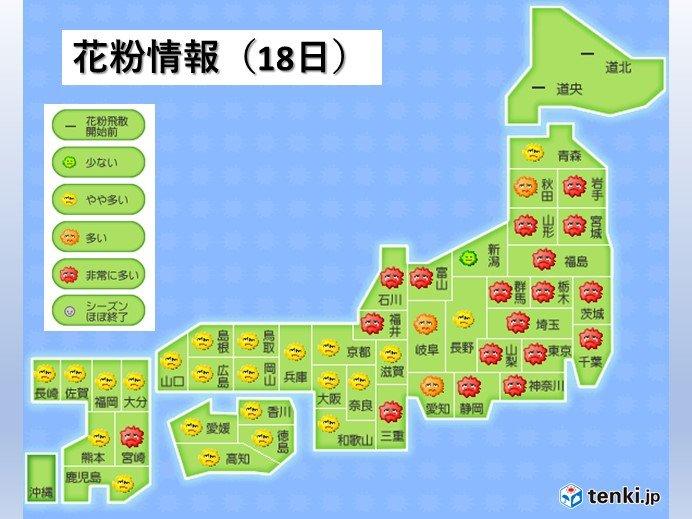花粉の飛散 東海から東北で非常に多い