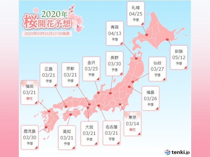 名古屋 大阪など桜開花間近 東京はあす満開予想