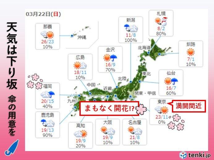 まるで初夏 関東では今年初の夏日か 開花促す雨に
