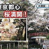 全国トップで東京の桜が満開 過去2番目に早い記録