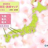 西から開花の便り続々と 大阪・高松・熊本で桜開花