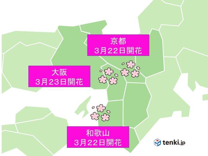 近畿地方 京都、和歌山、大阪で開花