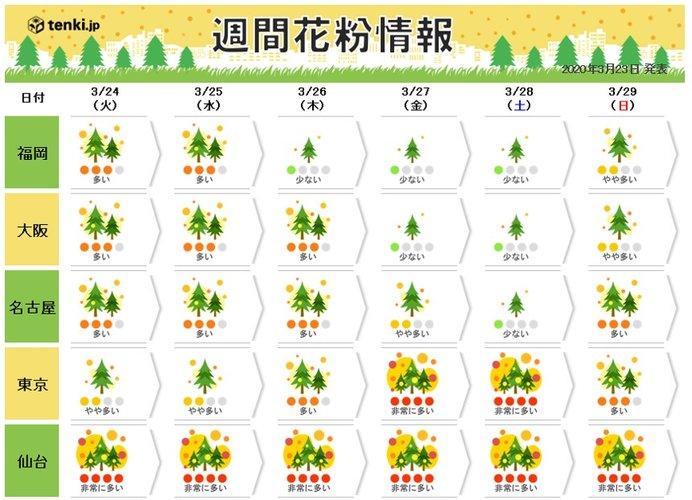 ヒノキ花粉本格化・気温乱高下・まとまった雨に注意